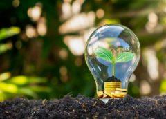 Empresas: 3 pasos para adoptar la resiliencia y superar la crisis de hoy